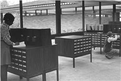 50th Card Catalog